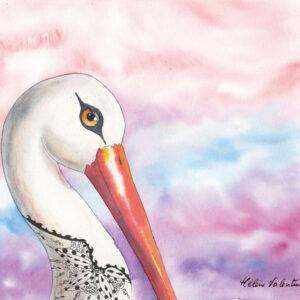 cigogne-helene-valentin-auteure-illustratrice-peinture-aquarelle