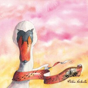 cygne-helene-valentin-auteure-illustratrice-peinture-aquarelle