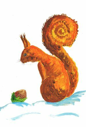 ecureuil-helene-valentin-acrylique-auteure-illustratrice-peinture-aquarelle