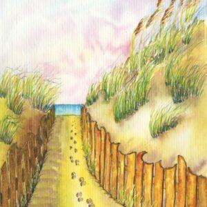 mer-dune-sable-aquarelle-illustration-livre
