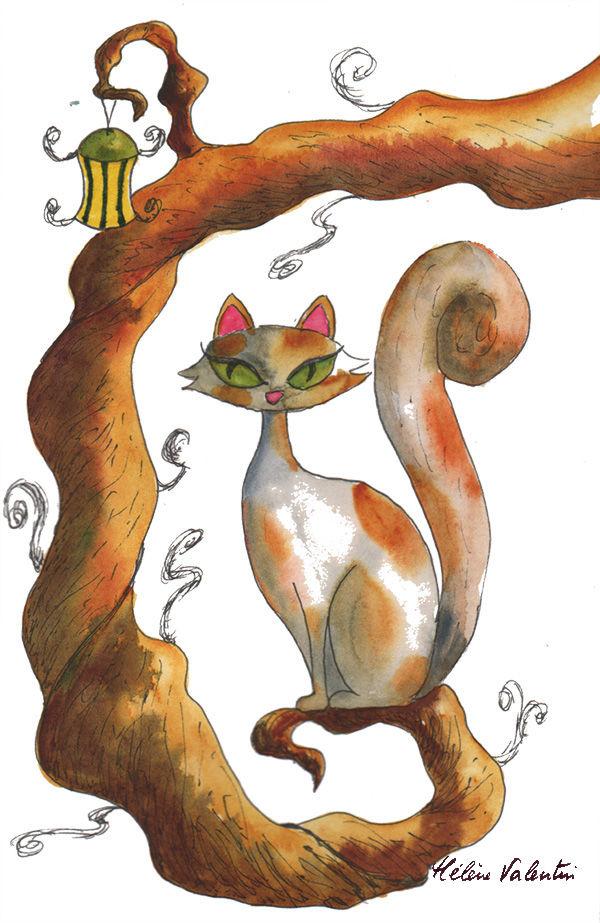 chat couleur